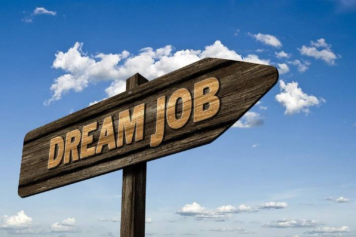 Assist You to Land Your Dream Job