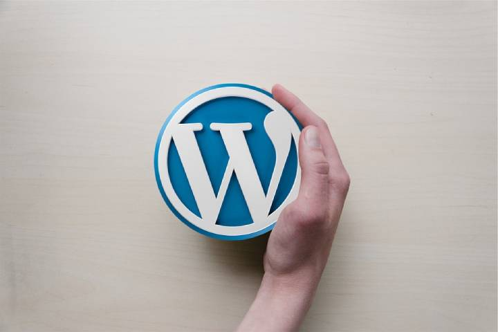How You Can Plan Your Website With Custom WordPress Development