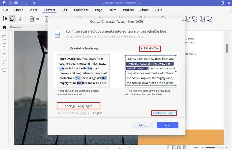 Edit the Converted PDF